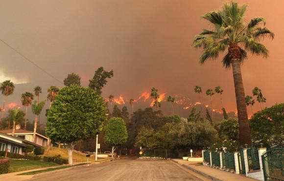 Chaos in Cali