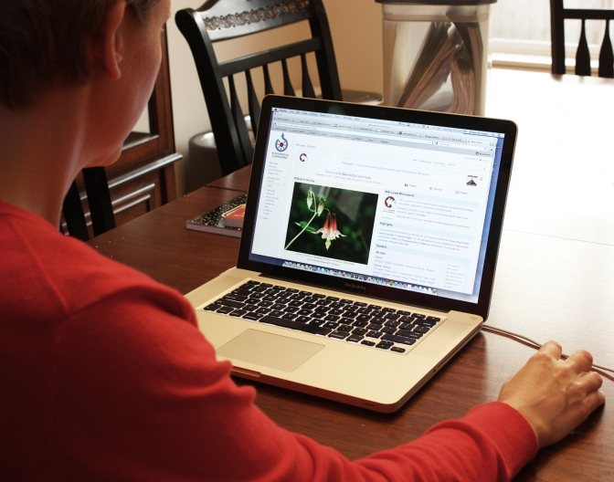In-class vs. Online Classrooms: Which should you take?